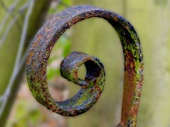 The Handle (rustyruth1959) Tags: nikon nikond3200 tamron16300mm yorkshire ripponden gate handle depthoffield outdoor bokeh patina rust texture metal curl rot decay corrosion field old green brown explored inexplore explore