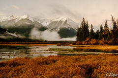 Watching the early morning fog roll in. (christianstapor) Tags: vermillionlakes banffnationalpark banff canada canadianrockies alberta landscape sunrise fall fujifilmxt10 xt10 mirrorless