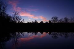 Mirror of  resonance ... (mariola aga) Tags: belviderespencerpark park pond lake evening sunset sky dusk trees shoreline clouds water reflection serene mirror resonance belvidere silhouette