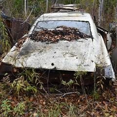DSC_0460 v2 v2 (collations) Tags: ontario mcleansautowreckers autowreckers wreckers automobiles autos abandoned rockwood derelict junkyards autograveyards carcemeteries