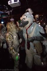 8M5A2367-245 (loboloc0) Tags: frolicparty frolic party furry furries club dance suit suiter fur fursuit dj sf san francisco indoor people costume performer