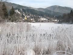 Eisblumen (christophrohde) Tags: winter bavaria bayern schliersee eisblumen