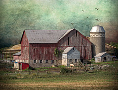 Approaching Storm (John Ronson Photography) Tags: lenabemannaj peerica jaijohnson approachingstorm barnandsilo horse textures farm