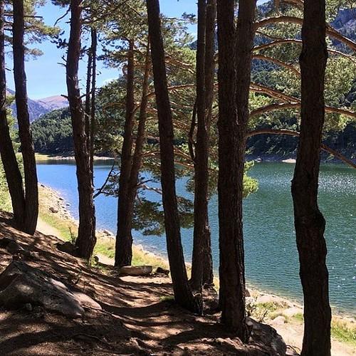Estany d'Engolasters. Andorra es mucho más que tiendas de electrónica y tabaco. Mucha historia y naturaleza. #lake #forest #water #andorra #trees