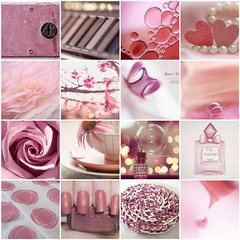 Dusty Pinks (haberlea) Tags: fdsflickrtoys