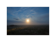 Misty moonrise. Husby Klit, Denmark (2016-08) (csinnbeck) Tags: moon moonrise ricoh gr night long exposure summer sky clouds car trail 2016 denmark husby klit