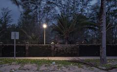 le passage (Narzouko) Tags: narzouko nature nuit night light lumière lampadaire lamp arbre tree street rue panneau signal signalisation asie asia thaïlande thai passage nohuman alone ambiance environnement vert jaune bleu green yellow blue déchets waste 24x36 numérique digital or gold tse24lii 24mm 5d2 canon5dmkii