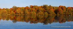 Fall colors (My Planet Experience) Tags: etang grandchaux laclet pond colour automn fall color automne tint golden yellow brown red green blue water tree forest sky nature landscape panorama horizontal dombes ain france fr myplanetexperience wwwmyplanetexperiencecom