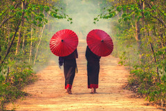 Unidentified Two beautiful Burmese woman holding traditional red umbrella and walking in forest during sunrise , Mandalay Myanmar,vintage style (Bee-Teerapol) Tags: myanmar landmarks tourisme ethnicity travel archeology wat burmese skyline old asia unesco shwedagon heritage architecture sanctuary tourism monastery exotic site exterior skyscraper adventure worldwonder destination burma culture bagan pagan stupa buddhism spirituality mandalay emerald world temple ruin pagoda scenic religion ancient monument structure eastern asian shrine landscape