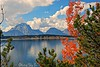 Reflecting in Fall (Eyes Open To Life) Tags: mountains tetons lakejenny lake reflection autumn fall foliage clouds nature wilderness landscape wow