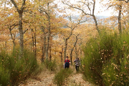 Alto De La Fonfría Desde Santurdejo Ezcaray - Logroño