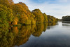 Reflecting on Carr Mill (g a millington) Tags: nikon autumn carrmill nikond5300 autumncolours lake reflections mirror mirrorimage reflect lihtreflect treeline goldenleaves water pondlakereflections duckpond dam reservoir sthelens