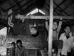 en attendant le maitre d'cole Laos (ichauvel) Tags: cole school enfants children petitsgarons littleboys fun rires laughing pitreries smiles acrobaties tableau blackboard laos asiedusudest southeastasia voyage travel village muangsing