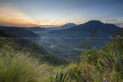 Sunrise at Songan Valley [EXPLORE] -  Bali Photography Tour (Pandu Adnyana Photography Tour) Tags: baliphotographytour baliphotographyguide balitravelphotography balilandscapephotography balilandscapetour balilandscape bali indonesia batur mount lake sunrise fog dawn valley pinggan
