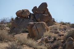 here we go again (rovingmagpie) Tags: california joshuatreenationalpark joshuatree mastodonmountainloop pariedolia rockface desertforests df2016