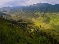 Bromo-Tengger-Semeru National Park, the caldera (1) (elly.sugab) Tags: mountain mount bromo tengger jemplang ranupani caldera ringoffire savana semeru ngadas landscape grassland highland