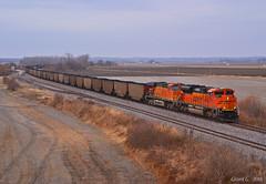 "Eastbound Coal Train in Orrick, MO (""Righteous"" Grant G.) Tags: bnsf railway railroad locomotive train trains east eastbound loaded coal emd ge power missouri thomas hill loads"