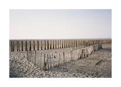 Summer souvenir (Punkroyaltiger) Tags: film analog beach mju portra kodak 400iso