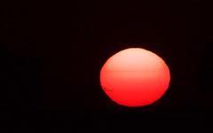 Soleil rouge - IMG_7788 (6franc6) Tags: 30 rando languedoc gard balade 2015 vélo août 6franc6