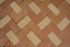 Formas repetidas (Marmotuca) Tags: beige ladrillos suelo marrn rectngulos