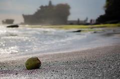 Coconut in Bali's beach (Richy F/ Paris) Tags: shadow summer bali cloud holiday beach temple coconut kuta tanahlot seminyak nex6sony
