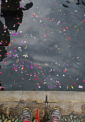 Holy Spring! (Solution?Revolution!) Tags: trip travel flowers bali feet water colors indonesia temple foot spring shoes adventure holy asics jl tirta empul pura viaggio sanctuary piede piedi avventura tampaksiring kecgianyar