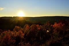 Sunset in the Ardennes, France (Thibault Gaulain) Tags: autumn sunset sun france tree automne de soleil leaf hiking champagne ardennes sightseeing coucher hike arbre coucherdesoleil feuille randonne rancennes givet d3200
