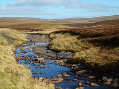 Trout Beck (ExeDave) Tags: uk october sac naturereserve cumbria blanket gb bog nr spa watercourse mire moorland upland moorhouse 2015 nnr peatland nationalnaturereserve northpennines upperteesdale sssi pa209219