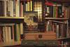 Caitriona Lally - Book Mark
