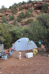 March Spring Break 2014 (Utah Desert) 303