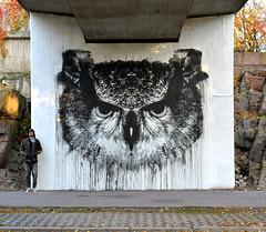 BUBO BUBO, wall mural, 2015, Pasila, Helsinki