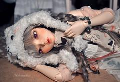 Dreaming of you... (nekomuchuu63) Tags: house face up hair grey eyes mod doll slim 14 chloe wig jc bjd fairyland viridian mako msd entangled minifee