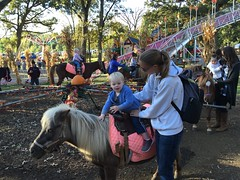 """Paul Rides a Pony • <a style=""""font-size:0.8em;"""" href=""""http://www.flickr.com/photos/109120354@N07/23224648875/"""" target=""""_blank"""">View on Flickr</a>"""