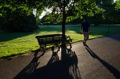 (Spannarama) Tags: greenwichpark london uk sunshine sunlight lowsun shadows park trees grass bench man walking