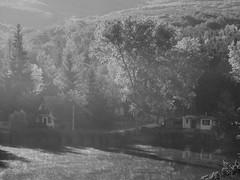 Morning mist at Blaptfalva's lake (un2112) Tags: morning mist dew belapatfalva blaptfalva hungary countryside lake blackandwhite bw monochrome panasonicg7 august landscape