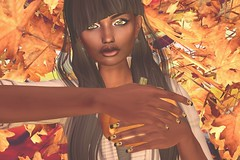 Pumpin Carving (suki (suegeeli decuir )) Tags: deboutique darkpassionskoffinnails erde shakeup fiore maitreya chez moi furniture moon hair faphotography kccouture