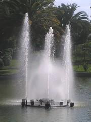 Im Parque de Santa Catarina, Funchal (Madeira) , NGID58003561 (naturgucker.de) Tags: ngid58003561 naturguckerde funchal santacatarina cwolfgangkatz