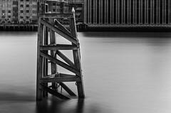 bords de la Tamise (mickaelbouquet) Tags: tamise longue exposition mouette fleuve london