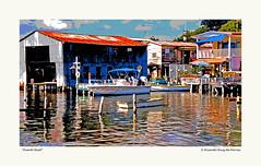 """""""Puerto Real"""" (RRP Photography) Tags: caborojo puertorico puertoreal playas botes boats shipyards caribbean marcaribe portadelsol nikonf3 analog analogphotography fujicolor filmphotography houses casas beachhouse casadeplaya skiff yola"""