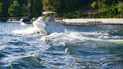 DSC01806 (cameronalvarado) Tags: university stadium lake lakeunion boating union seattle washington uw bridge bridges
