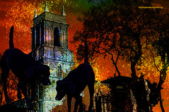 THE GUARDIANS OF THE TOWER. (Viktor Manuel 990) Tags: surrealism surrealista tower torre blackdogs perrosnegros tree arbol digitalart artedigital night noche quertaro mxico victormanuelgmezg