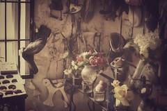 "organic grief (listening to ""blood bank"", bon iver) (jeneksmith) Tags: bizarre strange graveyard cemetery saintrochs bigeasy crescentcity nola neworleans louisiana canon"