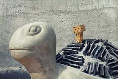 47/365 Danbos steinerner Freund / Danbo's friend of stone (-Aperture-) Tags: danbo danboard 365 tage days projekt project canon eos 600d ef 35 mm is usm schildkrte turtle beton concrete