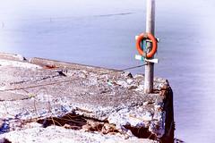 The Ring _6180 (hkoons) Tags: atlantic bakkaförður iceland wharf abandon abandoned bay beach concrete cracks disused fiord fjord inlet island left northeast ocean old rust saltwater sand sea surf water waves buoyant