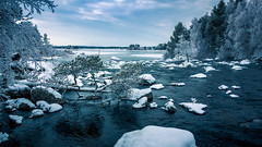 water & snow (SeALighT!) Tags: sverige sweden schweden lapland lappland arjeplog snow water trees branches river lake