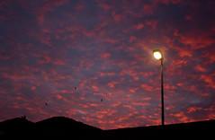 Low and High Lights (Cauldrn) Tags: crepsculo twilight nubes cloud farola light luz pjaros birds lowlights cielo sky canoneos550d rebelt2ikissx4 corua galicia