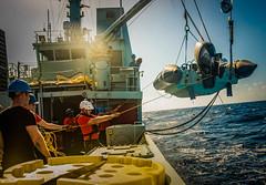 Operation CARIBBE (Royal Canadian Navy / Marine royale canadienne) Tags: navy royalcanadiannavy rcn hmcs kingston op carribe at sea