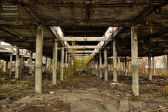 Thanks.Giving ( Explored ) (DetroitDerek Photography ( ALL RIGHTS RESERVED )) Tags: allrightsreserved detroitderek thanks thanksgiving 313 detroit november 2016 hdr 3exp canon 5d friends family michigan motown motorcity abandoned bare stripped usa america ruin decay urbandecay