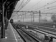 A foggy afternoon in November #2 (Bart K. Prins) Tags: panasonic lumix dmclx7 blackandwhite bw monochrome nijmegen fog trainstation netherlands
