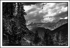 Rocky Mountains (Sugardxn) Tags: trees blackandwhite bw mountains photoshop canon colorado co estespark picswithframes canoneos7d canon7d sugardxn garypentin